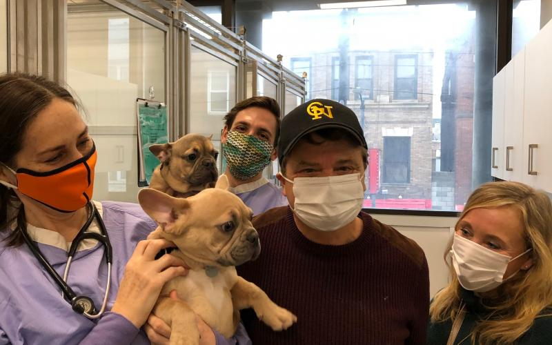 Mike Quigley with French Bulldog Puppies
